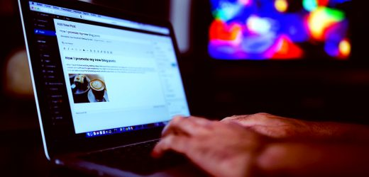 Are You a Newbie to WordPress? Follow these 3 Tips