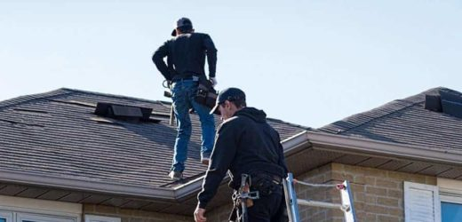 Top Tips When Inspecting Your Roof